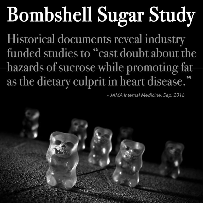 sugar study Sugar is the generic name for sweet-tasting, soluble carbohydrates, many of which are used in food the various types of sugar are derived from different sources.